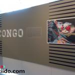 Violencia sexual en el conflicto armado Congo