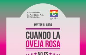 Grupo GRIIS Universidad del Rosario.