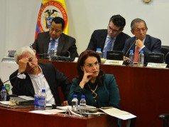 Viviane Morales referendo